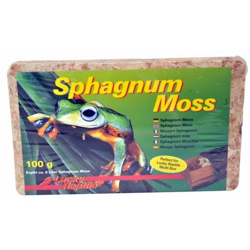 Lucky Reptile Sphagnum Moss - rašelinník