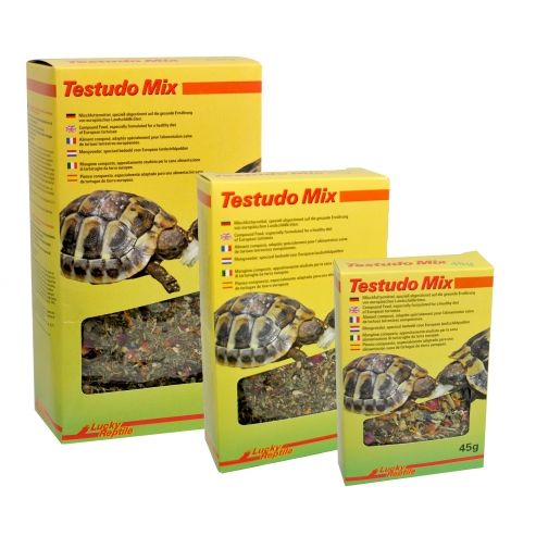 Lucky Reptile Testudo Mix