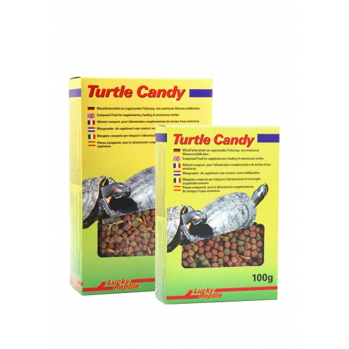 Lucky Reptile Turtle Candy