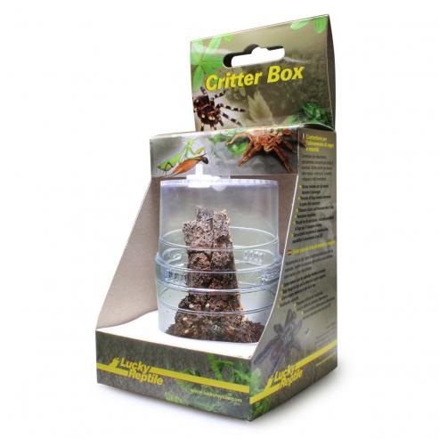 Lucky Reptile Critter Box