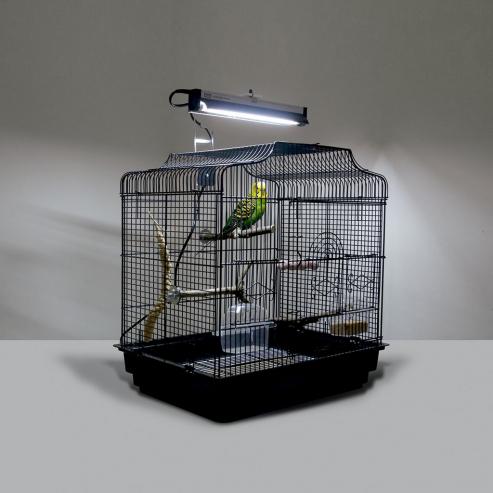 Arcadia PureSun-Mini Bird Kit