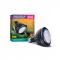 Arcadia Jungle Dawn LED